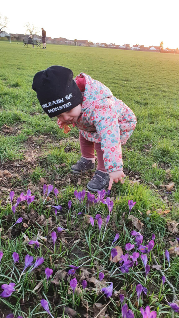 Little girls points at spring flowers